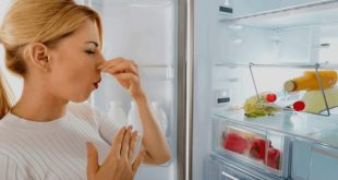 how to remove refrigerator smell